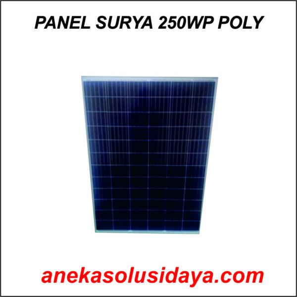 PANEL SURYA 250WP POLY