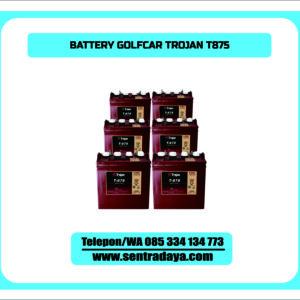 BATTERY TROJAN T875 | BATERAI GOLFCAR 8V175AH